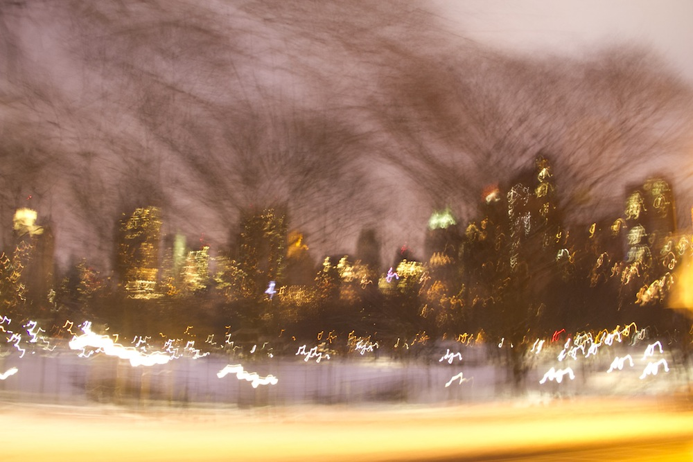 13.view from a carriage 1, Central Park